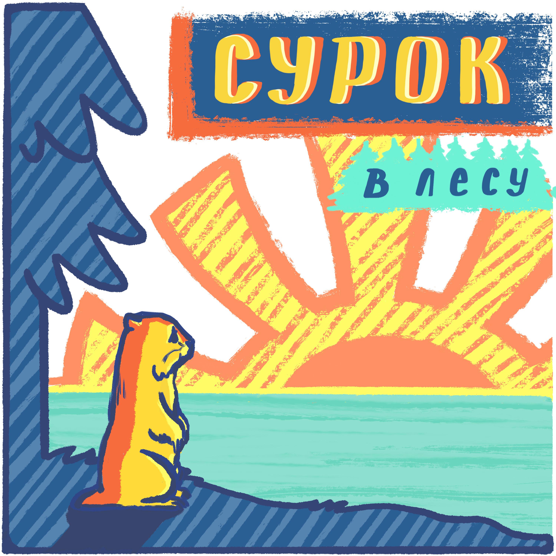 Сурок в лесу — Неформальное образование, Erasmus и ТикТок - Вика Ткаченко